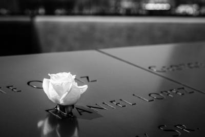 New York - Manhattan - White rose at 9/11 Memorial