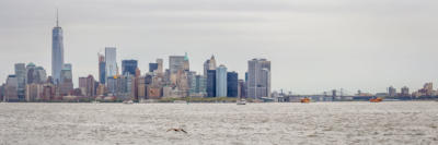 New York - Manhattan skyline from Liberty Island